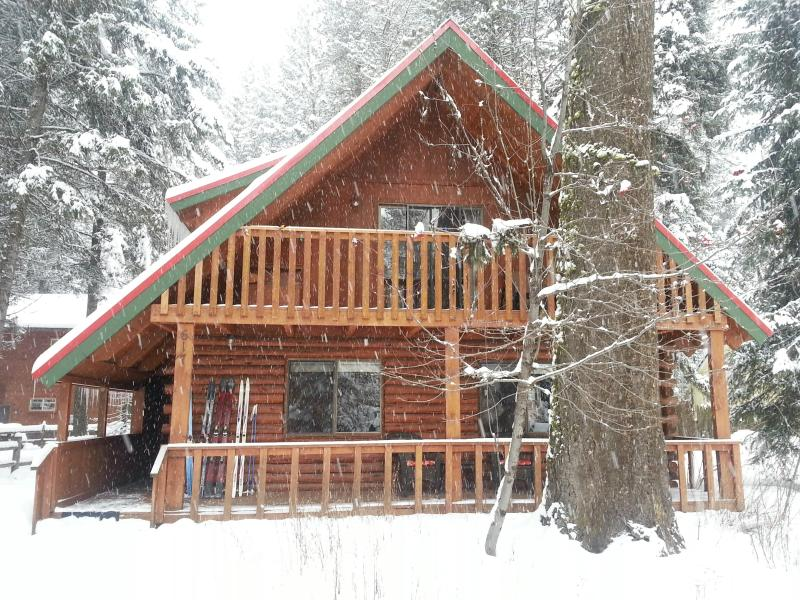 National Georgraphic recently ranked McCall #1 Best Secret Ski Town! - Spacious Lake Shore Ponderosa Cabin Great Location - McCall - rentals