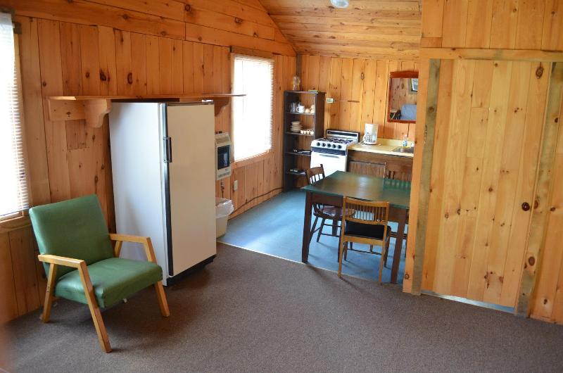 Adirondack 1-4 - Image 1 - Lake George - rentals