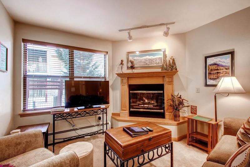 Beautifully Appointed Breckenridge 2 Bedroom Ski-in - RW119 - Image 1 - Breckenridge - rentals