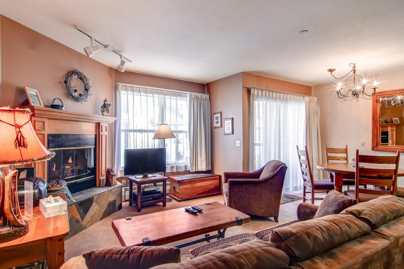 Appealing  1 Bedroom  - ********** - Image 1 - Breckenridge - rentals