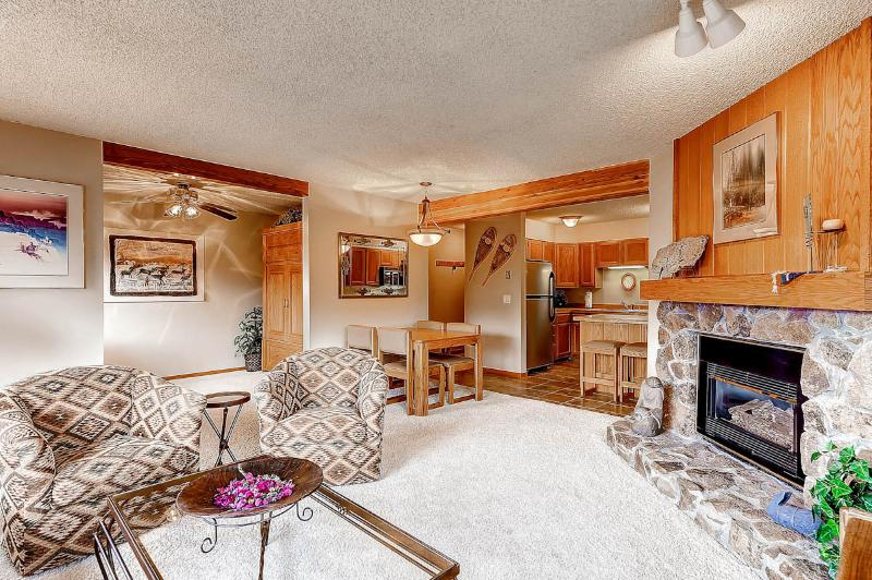 Appealing  1 Bedroom  - ********** - Image 1 - Breckenridge - rentals