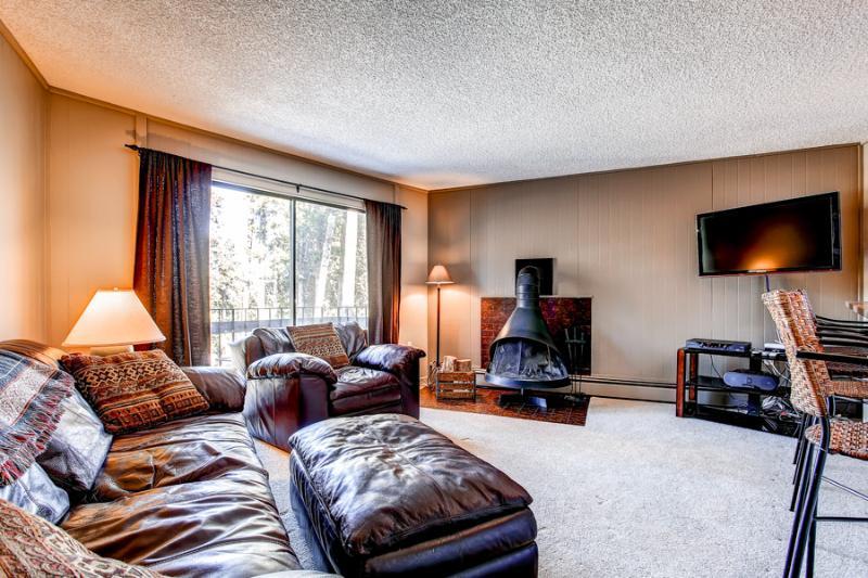 Lovely  2 Bedroom  - 1243-47747 - Image 1 - Breckenridge - rentals