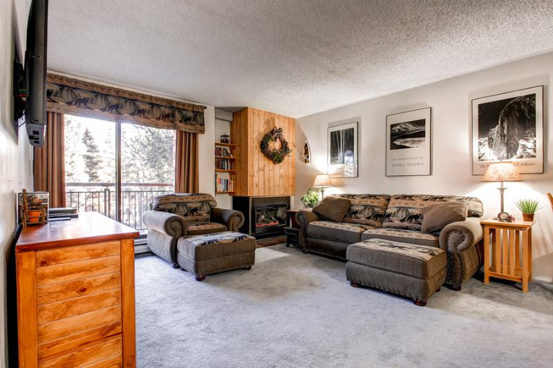 Economically Priced  1 Bedroom  - ********** - Image 1 - Breckenridge - rentals