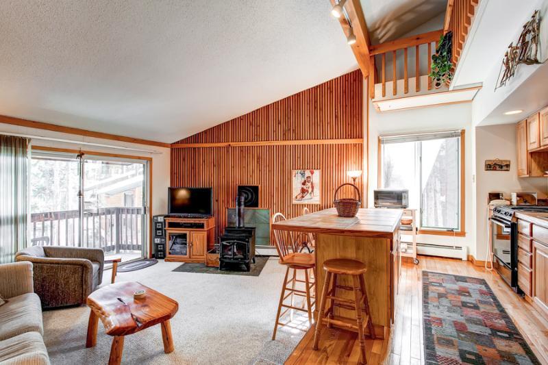 Economically Priced  2 Bedroom  - 1243-21395 - Image 1 - Breckenridge - rentals