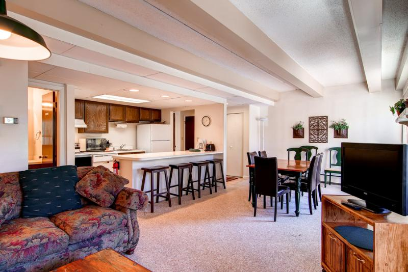 Beautiful  2 Bedroom  - 1243-21362 - Image 1 - Breckenridge - rentals