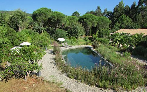Access to our ecological pool without chemicals. - Studio Superior 3* for 2 in a villa at Grimaud - Grimaud - rentals