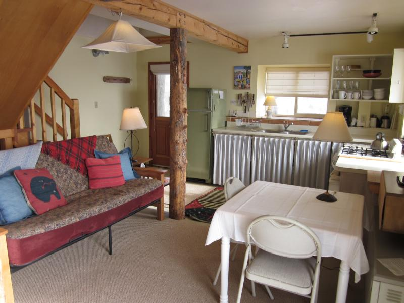 Great Room - The Beetch House Retreat Cabin - Crestone - rentals