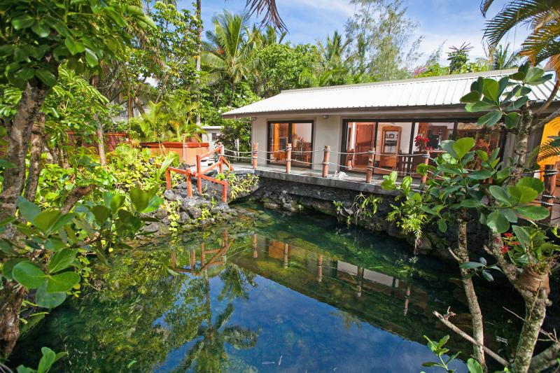 Ocean fed Warm Pond surrounds your Vacation Home- Take a Swim ! - Lagoon Shangrila - Discover the Real Hawaii!! - Pahoa - rentals