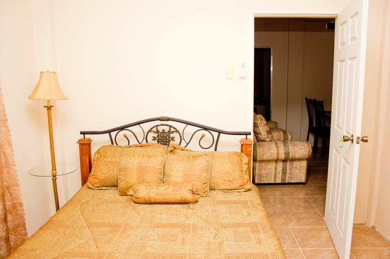 Earthy Bedroom #3 - Cheers!! Earthy South Single Bedroom - Caroni - rentals