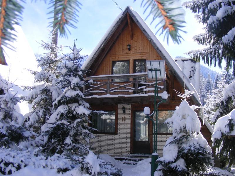 TraveLand Villas Poiana Brasov - Four-Bedroom Vill - Image 1 - Poiana Brasov - rentals