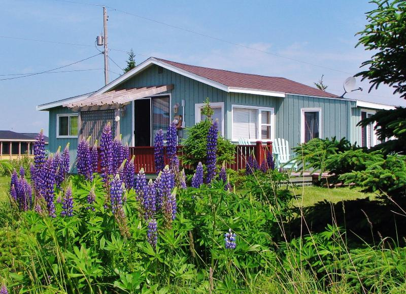 Artist's View Ocean Cottage,  Prince Edward Island - Image 1 - Bedeque - rentals