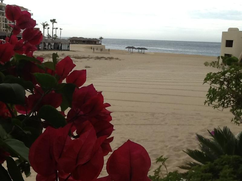 view from patio - Cabo beach - off the patio onto the sand 113 Terrasol - Cabo San Lucas - rentals