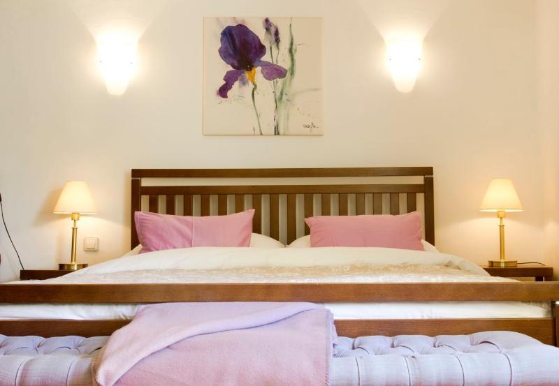 (3) Elegant Apartment in Best Location in Old Salzburg - Image 1 - Salzburg - rentals