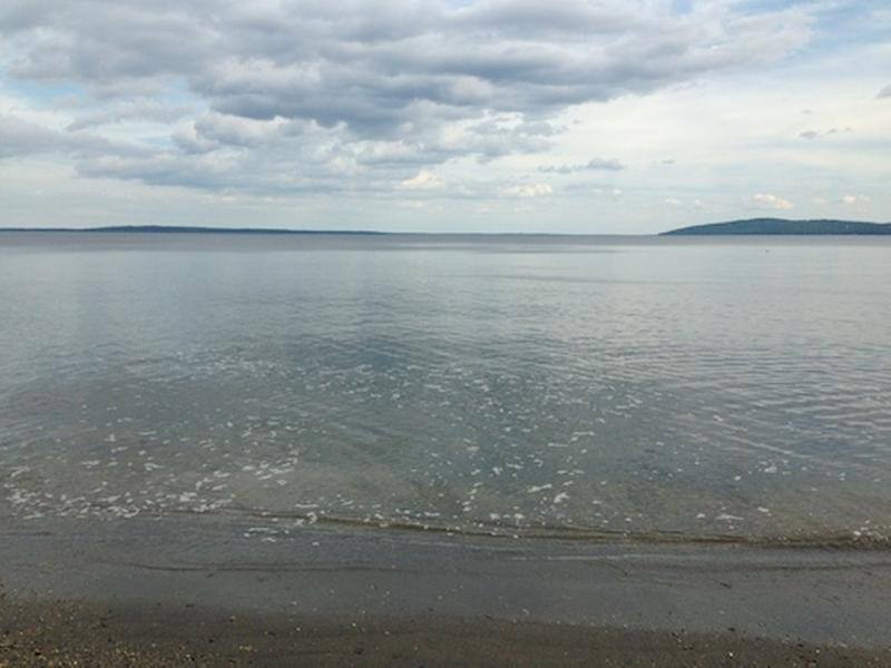 Ocean View - Beachside Cottage - Searsport - rentals