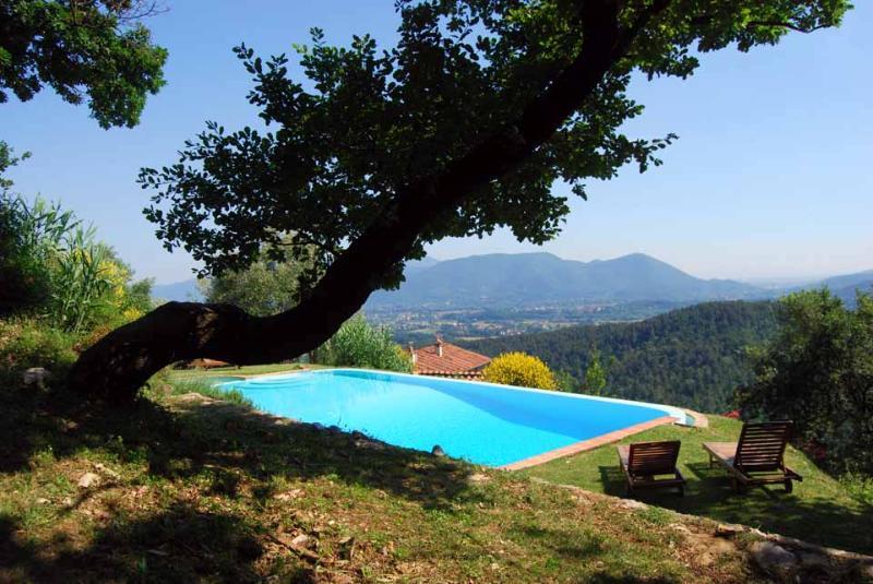 Villa Macario - Villa Macario - Lucca - rentals