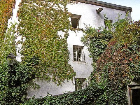 Top 4 ~ RA7010 - Image 1 - Salzburg - rentals