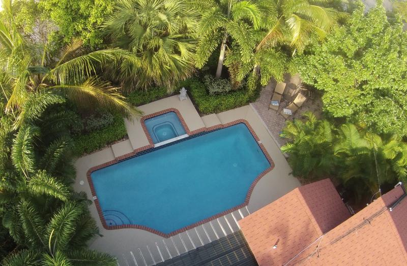 Aerial view of salt water pool and back garden. - Tropical Paradise Luxury Home Salt Water Pool - West Palm Beach - rentals