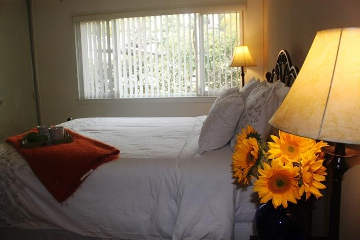 Master bedroom. - La Jolla Executive Retreat - La Jolla - rentals