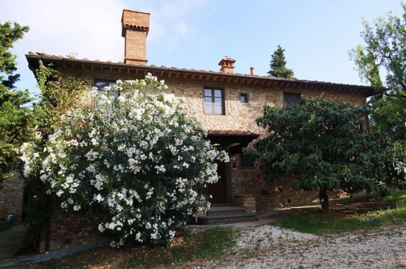VILLA MIMA - Image 1 - Montespertoli - rentals