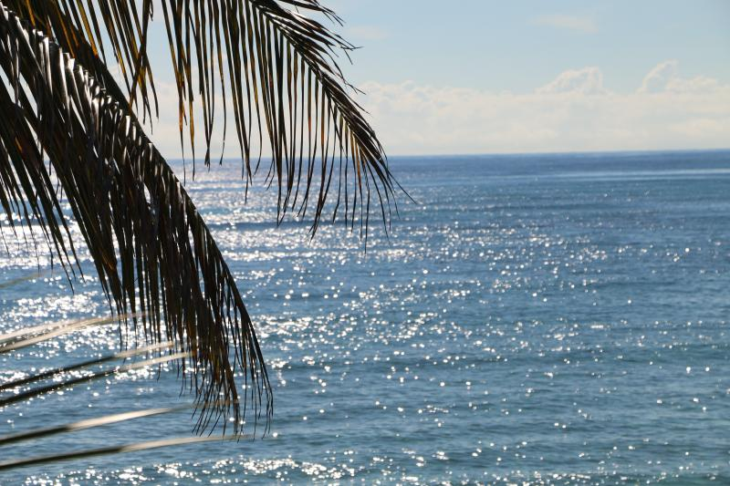 Akumal Beach Condo with WOW views! - Image 1 - Akumal - rentals