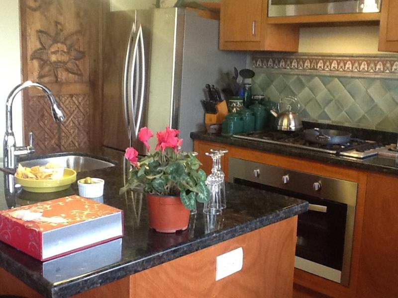 kitchen island - House With Pool, sleeps 1-6, SanMiguelDeAllende - San Miguel de Allende - rentals