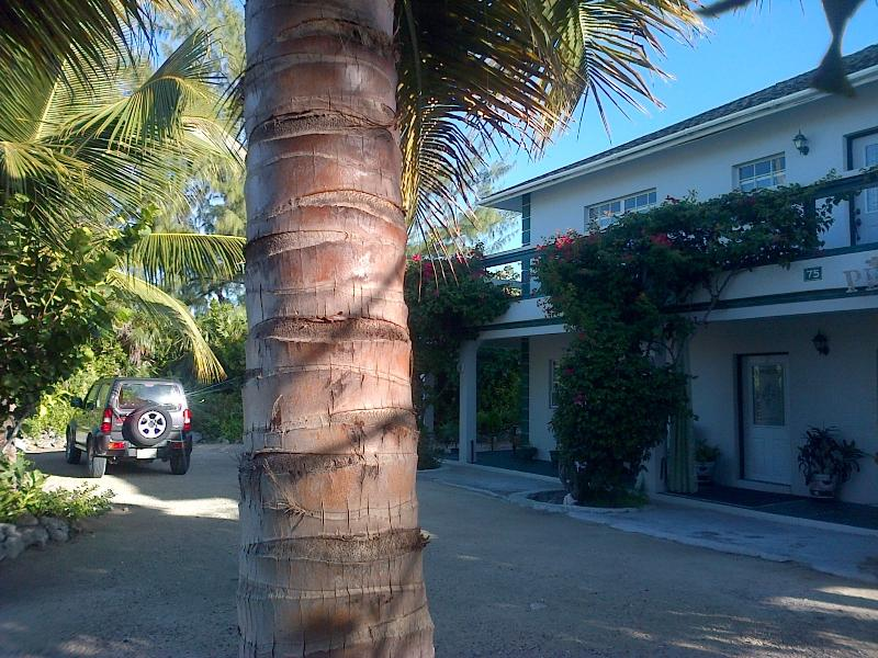 Silver Palm Beach House Turks and Caicos - Silver Palm Guest House Turks and Caicos - Providenciales - rentals