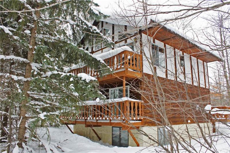 Holiday Haus - Image 1 - Ironwood - rentals