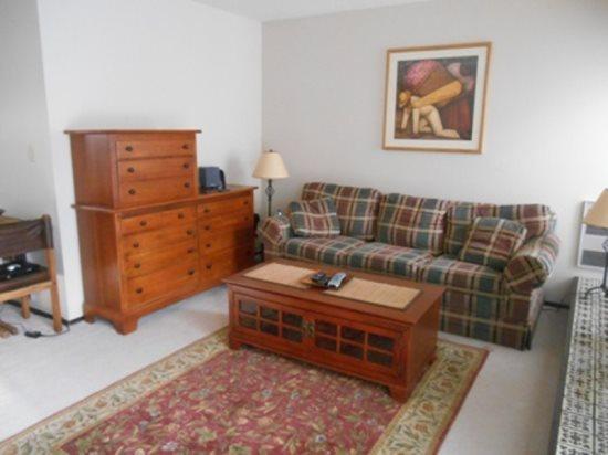 Living Room - Indian Springs Condo 2386: 1 BD/1BA - Sun Valley - rentals