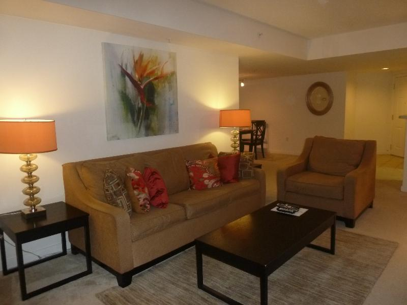 Living room - Lux 1 BR near Pentagon Row w/WiFi - Arlington - rentals