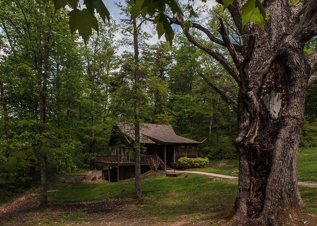 Private Hocking Hills Cabin - Image 1 - Logan - rentals