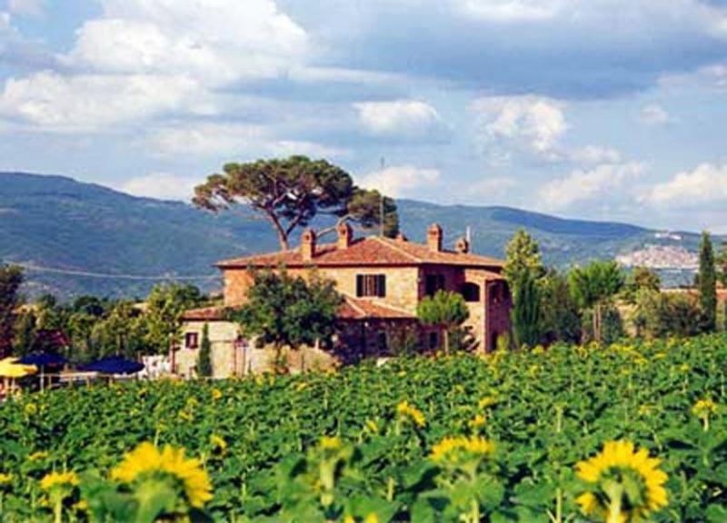 Apartment Greca - Image 1 - Cortona - rentals
