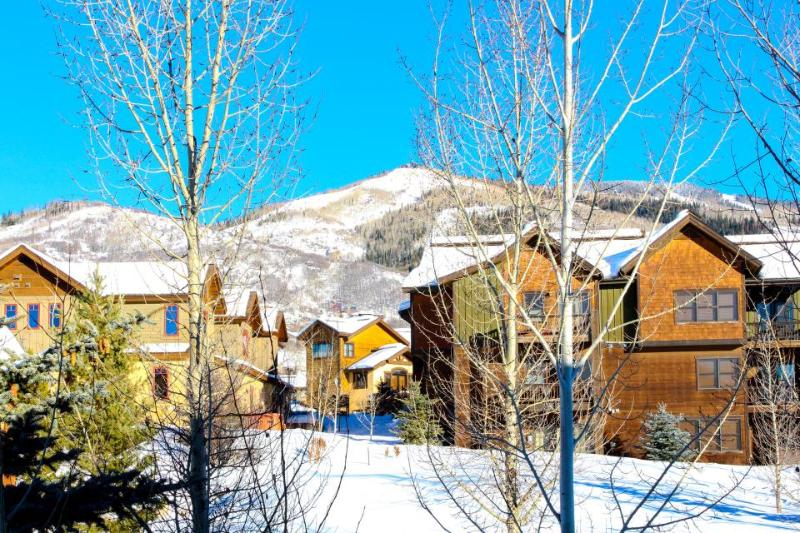 Relax amongst the ski area views and high-end finishes - Image 1 - Steamboat Springs - rentals