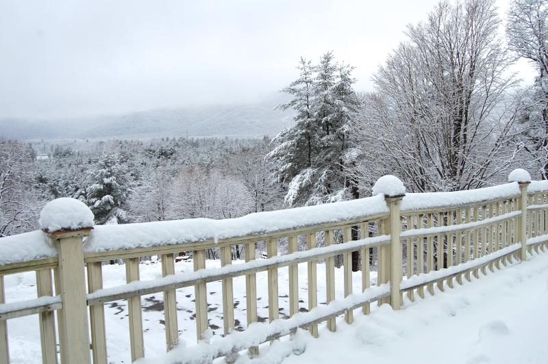 Gorgeous Views from the balcony! - Strawberry Villa - 7 bedrooms, 6 bath - sleeps 20! - Manchester - rentals
