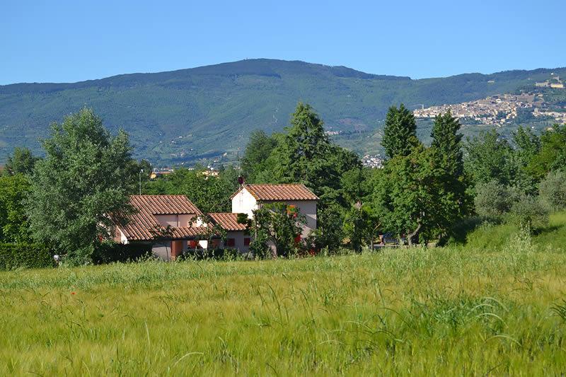 Villino Laura - Image 1 - Montecchio - rentals