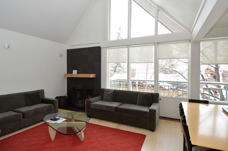 living.JPG - Fifth Avenue Unit 5 - Aspen - rentals