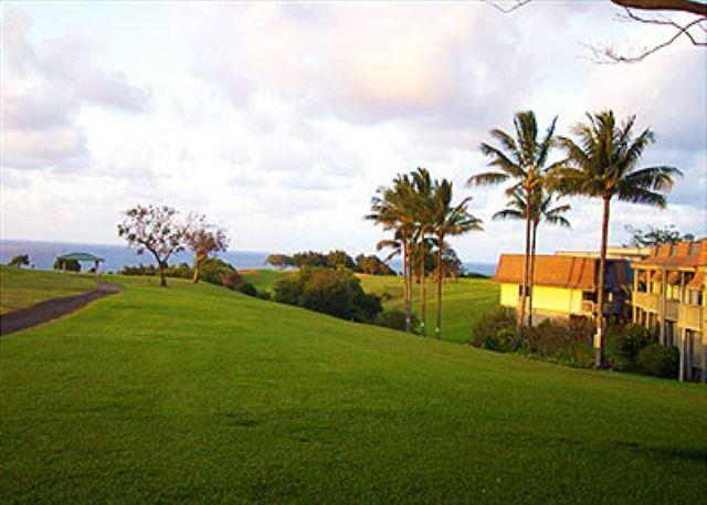 Puamana - Puamana 9C: Affordable paradise for beach fans and golf lovers - Princeville - rentals