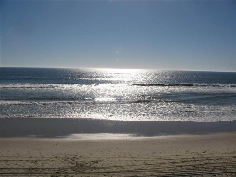 1317 S. Pacific St. #C - Image 1 - Oceanside - rentals