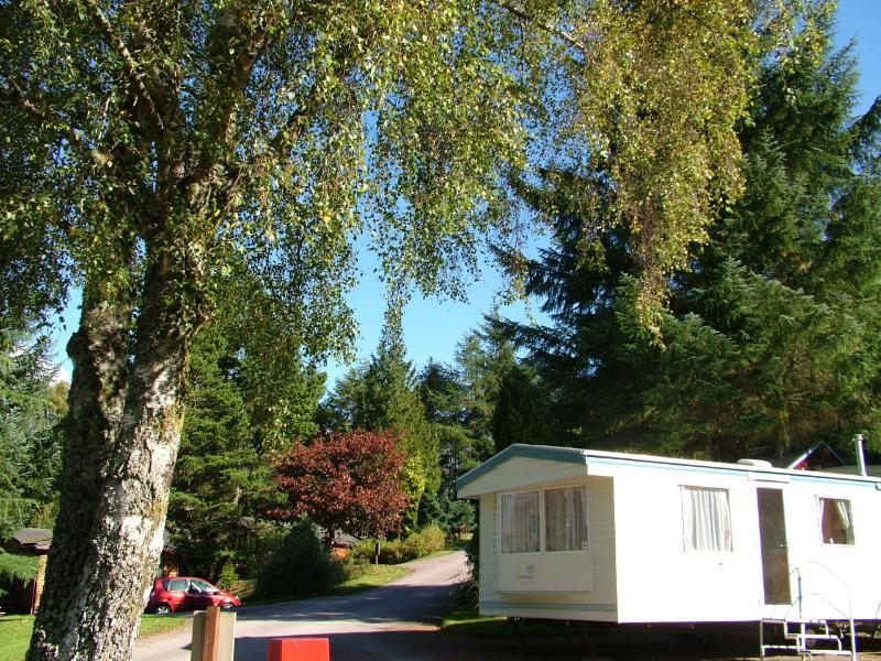 Set amongst gardens - Silver Caravan with garden views - Fort William - rentals
