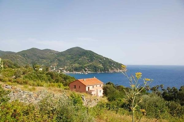 Lovely farmhouse with beautiful views of the Gulf of Levanto. Completely restored. SAL LAG - Image 1 - Tuscany - rentals