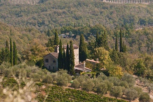 Beautiful farmhouse in secluded Castello di Volpaia estate. SAL VOL - Image 1 - Chianti - rentals