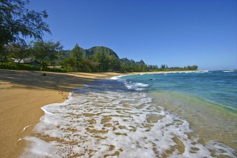 Makua Kai Homes - Image 1 - World - rentals