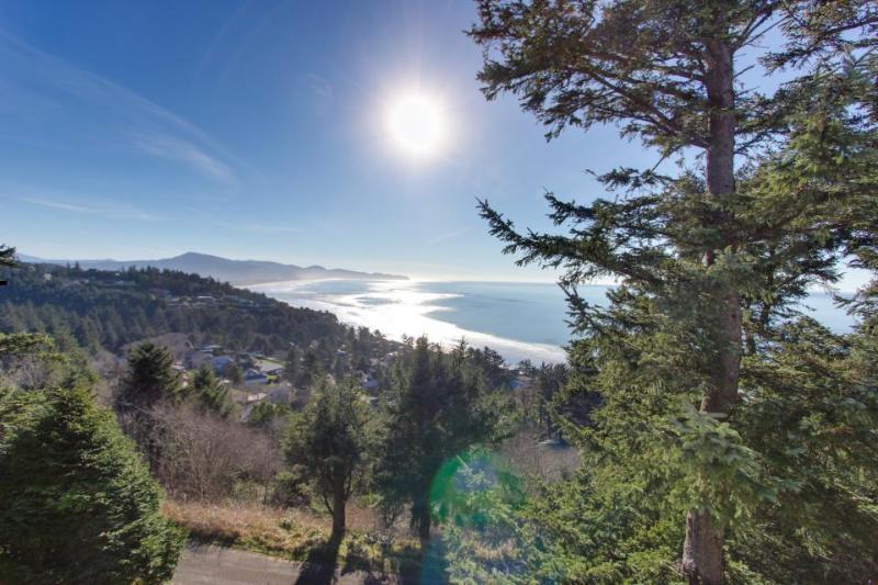 Gorgeous ocean views, pet-friendly cabin on the coast! - Image 1 - Oceanside - rentals