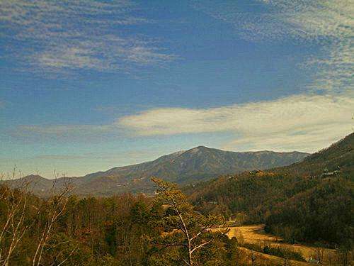 ***The best secluded cabins in the Smokies!*** - Image 1 - Pigeon Forge - rentals