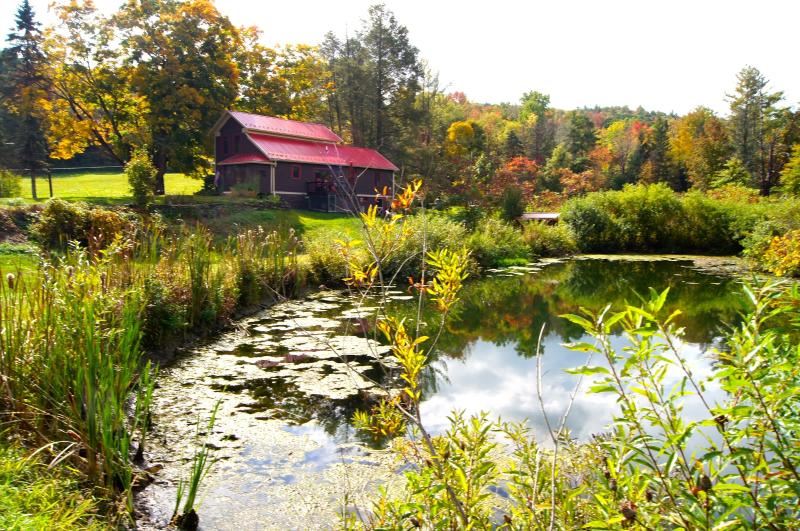 Beautiful Grounds and Scenery & different every season to come back to. - TWIN PONDS, Pet Friendly Vacation Rental on 20 ac - Pittston - rentals