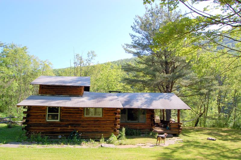 Mountains Surround Us - Charming Real Log Cabin, Mtn Views, 2 Hrs from NYC - Phoenicia - rentals