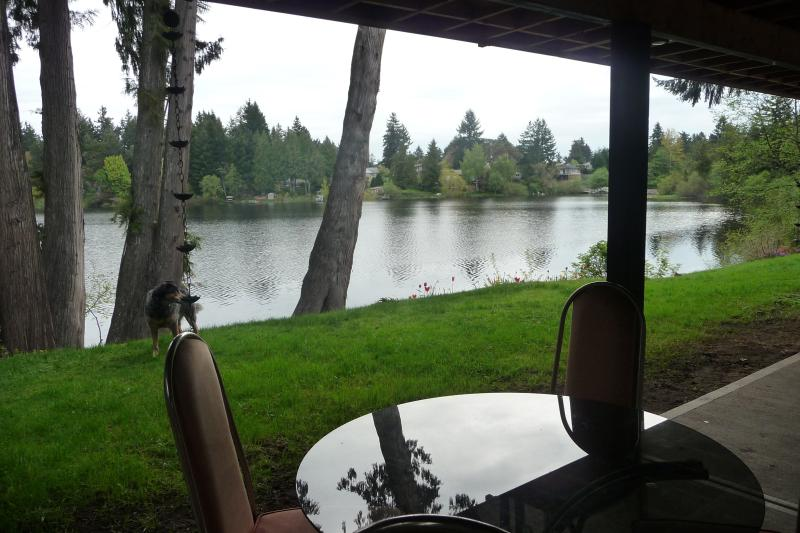 The view from the patio - Accommodation Vacation Rental West Shore Victoria - Victoria - rentals