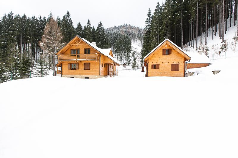 WILI HUNTER in winter - Wili Hunter Country House - Donovaly - rentals