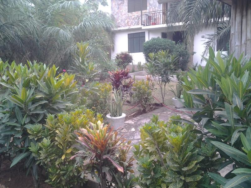 As the sun is setting... - Ideal Garden Flat with vegan cafe: for 1-5 guests - Accra - rentals