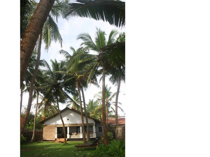 The Beach House on Hikkaduwa Beach - The Beach House, Hikkaduwa, Sri Lanka - Hikkaduwa - rentals
