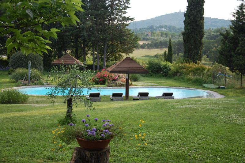 the pool and the garden pool - apartment Il Buratto - - Arezzo - rentals